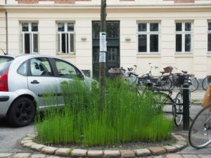 en hørmark på Frederiksberg